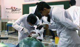 گزارش تصویری فعالیت های دندانپزشکی جهادگران سفیران سلامت