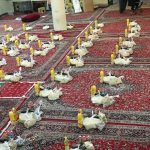 خدمت گروه جهادی اصناف به روستاهای محروم
