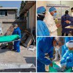 جلوههای ایثار جهادیها در بیمارستان